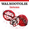 Walnootolie intens regulier mild licht biologisch